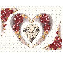 Valentine Heart Photographic Print