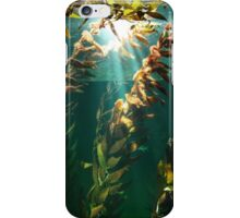 Kelp: the forest of the sea iPhone Case/Skin
