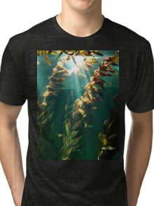 Kelp: the forest of the sea Tri-blend T-Shirt