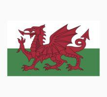 Wales National Flag - Welsh Rugby Football Fan Sticker T-Shirt Bedspread One Piece - Short Sleeve