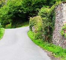 English Country Lane in Devon by MarkUK97