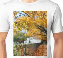 Graveyard in Autumn Unisex T-Shirt