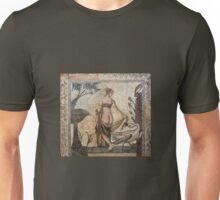 Mosaic - Leda and the swan Unisex T-Shirt