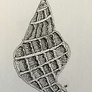 Sea shell  by Sharon A. Henson