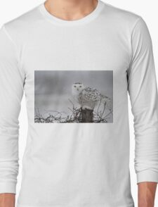 As the night fades into day Long Sleeve T-Shirt