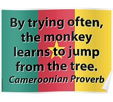 By Trying Often - Cameroonian Proverb Poster