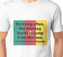 By Trying Often - Cameroonian Proverb Unisex T-Shirt