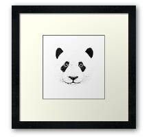 Biro Panda Framed Print