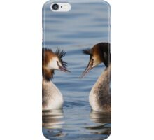 Great Crested Grebe - Courtship Dance iPhone Case/Skin
