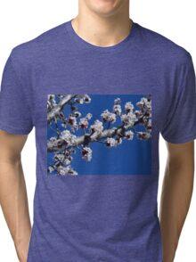 Apricot Flower Tri-blend T-Shirt