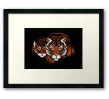 Mother Tiger and Cub  Framed Print