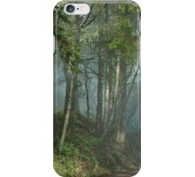 Cowell trail in the fog iPhone Case/Skin