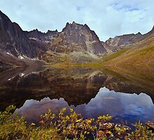 Grizzly Lake by Yukondick