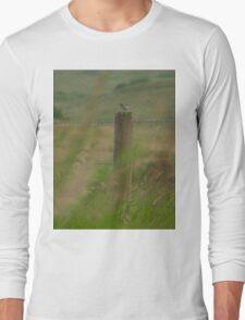 Sparrow on Fence Post Long Sleeve T-Shirt