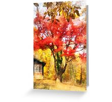Red Autumn Sycamore Greeting Card