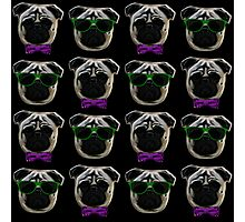 """Cool Pugs"" purple/green Photographic Print"