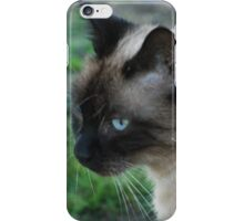 TOP CAT iPhone Case/Skin