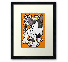 English Bull Terrier Pup Daisies  Framed Print