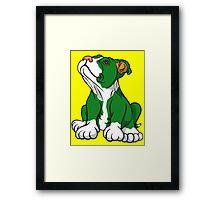 Irish American Bull Terrier Pup Framed Print