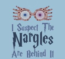 Harry Potter - I Suspect the Nargles Are Behind It by felicitymuscat