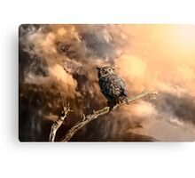 Coming Storm - Color Metal Print