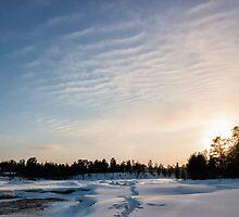 Lapland Skies by Kristin Repsher