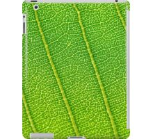 Department of Water and Energy iPad Case/Skin