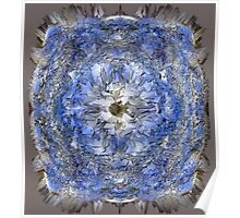 Fisheye Over the Fortress of Solitude Poster