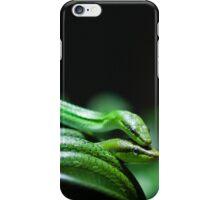 Green Tango iPhone Case/Skin