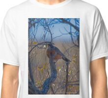 Turdus Migratorius - American Robin | Northwest Harbor, New York Classic T-Shirt
