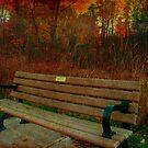 Autumn daydreams by MarianBendeth