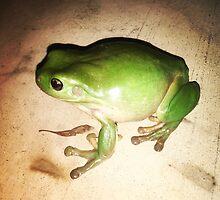 Green Tree Frog 'the Hulk'  by Blake  Hyland