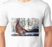 Flaxen-maned beauty Unisex T-Shirt