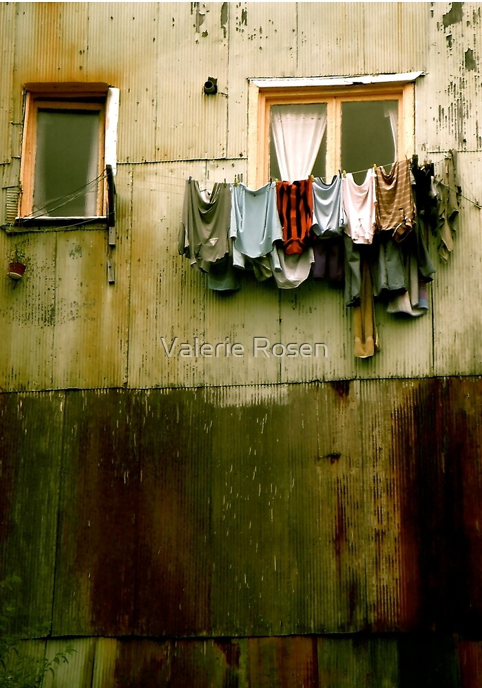 Out to Dry (Crop) by Valerie Rosen