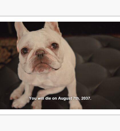 John Mulaney Dog Wishes Him Luck Sticker