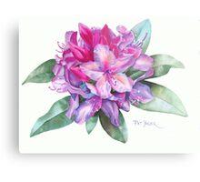 Washington Rhododendron Metal Print
