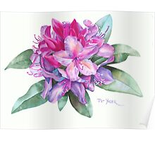 Washington Rhododendron Poster