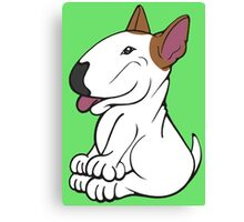 Mini Bull Terrier Lola  Canvas Print