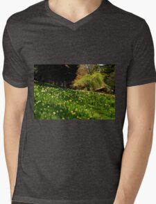Daffodil Hill Mens V-Neck T-Shirt