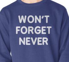 WON'T FORGET NEVER Pullover