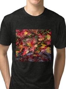 Fallen Leaves Tri-blend T-Shirt