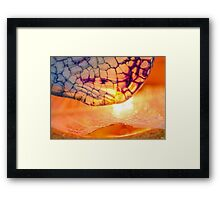 Passion's Glow Framed Print