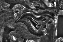 Stone Dragon by Diego Re