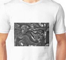 Stone Dragon Unisex T-Shirt