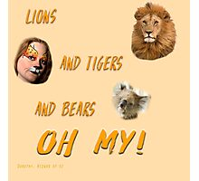 Lions, and Tigers, and Bears, Oh My (Dorothy, lion, scarecrow, tinman, wizard of Oz) Photographic Print