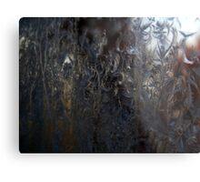 Frosty Window (3627) Metal Print