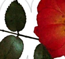 Pressed Rose Sticker Sticker