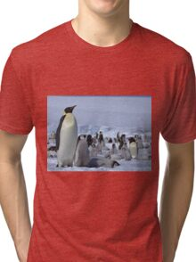 Emperor Penguin and Chicks - Snow Hill Island  Tri-blend T-Shirt