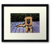HUMOUR DOG PICTURE>>GERMAN SHEPARD ...INBRED...PICTURE AND OR CARD ECT. Framed Print