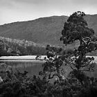 Lake Newdegate 1 by Andrew Smyth